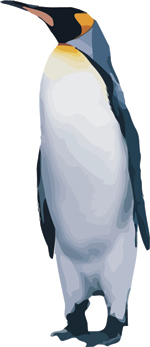 Free Penguin vector