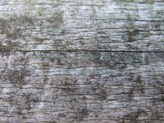 A Free Wood Grain Texture is provided on this page!