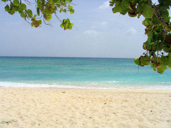 A picture of the view our to sea from Cemetery beach, Grand Cayman.