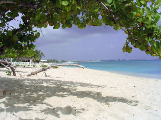 A picture of the view of Seven Mile beach from Cemetery beach , Grand Cayman.