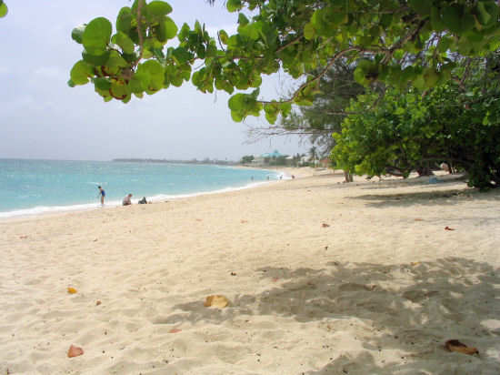 A picture of the view along Cemetery beach, Grand Cayman.