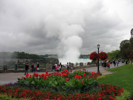 Picture of  The  Niagara Falls With Flowers In Foreground  is shown on this page.